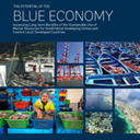 The Potential of the Blue Economy: Increasing Long-term Benefits of the Sustainable Use of Marine Resources for Small Island Developing States and Coastal Least Developed Countries