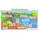 Marvellous Mangroves